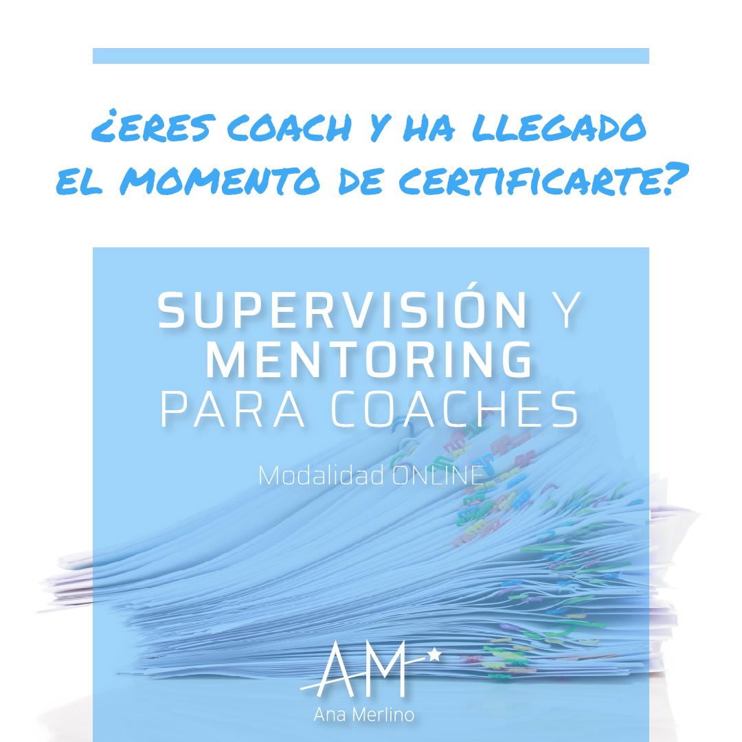 programa mentoring