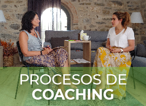coaching ana merlino